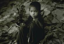 The Phi Tong Luang